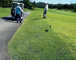 TDJ Græsarmering golf